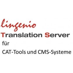 Lingenio Translation Server Character Package: 4 Mio. Characters