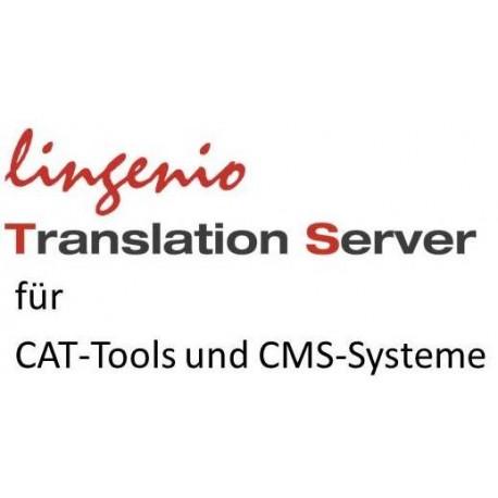 Lingenio Translation Server Zeichenpaket: 64 Mio. Zeichen